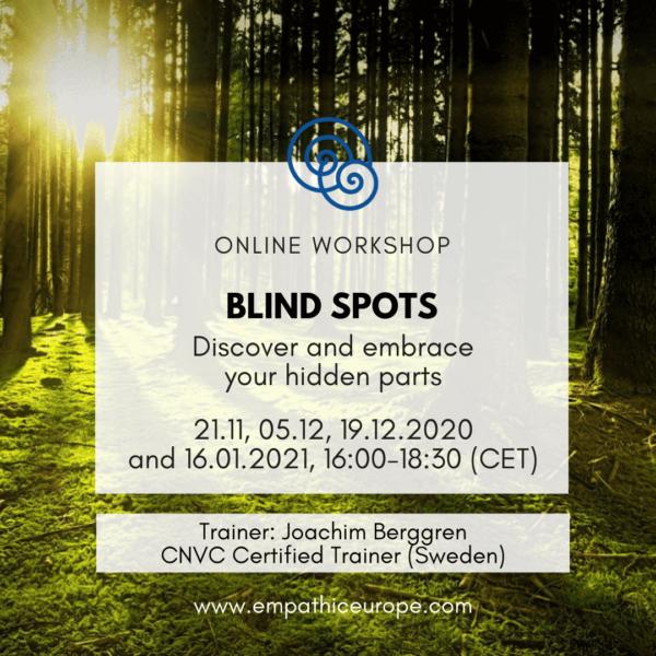 Blind Spots Joachim Berggren